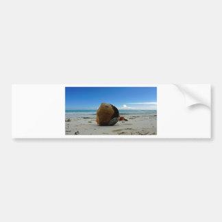caribbean coconut bumper sticker