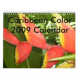 Caribbean Color...The Flowers Calender 2009 Wall Calendar