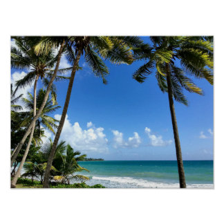 Caribbean Island, Martinique Poster