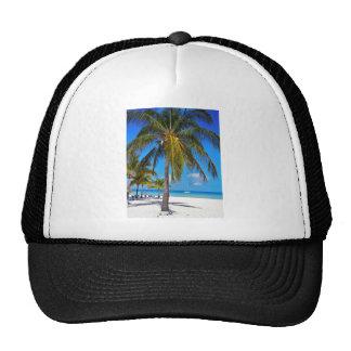 Caribbean palm tree trucker hat
