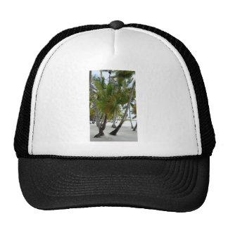 caribbean paradise trucker hats