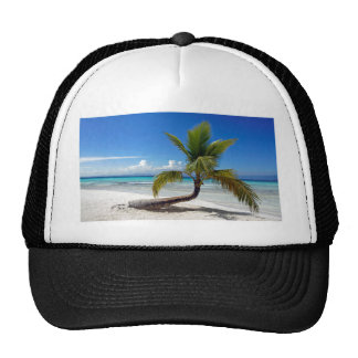 caribbean paradise hat