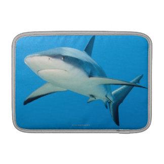 Caribbean reef shark (Carcharhinus perezi) MacBook Air Sleeve