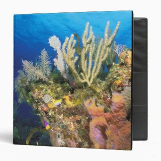 Caribbean. Reef. Vinyl Binder