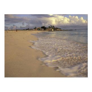 Caribbean, St. Martin (St. Maarten). Maho Bay Postcard