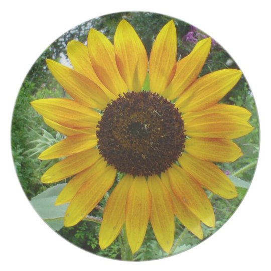 Caribbean Sun Flower Plate