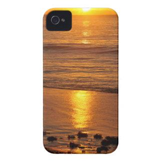 Caribbean sunset Case-Mate iPhone 4 cases