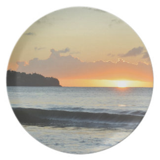 Caribbean sunset party plate