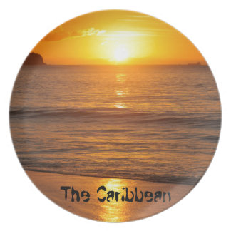 Caribbean sunset party plates