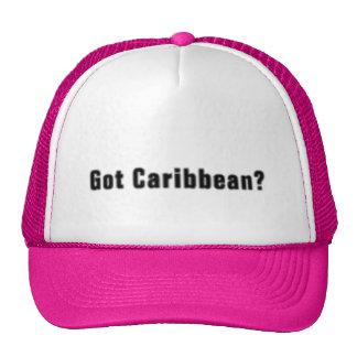 Caribbean T-Shirt And Etc Mesh Hats