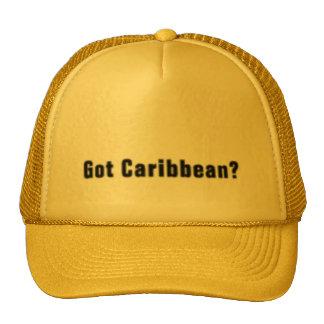Caribbean T-Shirt And Etc Trucker Hat