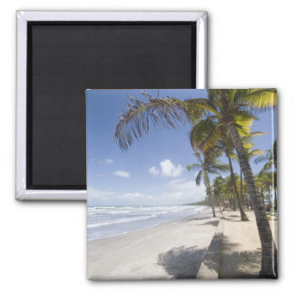 Caribbean - Trinidad - Manzanilla Beach on Square Magnet