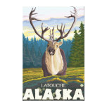 Caribou in the Wild - Latouche, Alaska Stretched Canvas Print