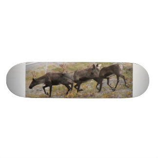 Caribou Trot Skateboard