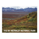 Caribou Tundra Turning Red MT McKinley National PK Postcard