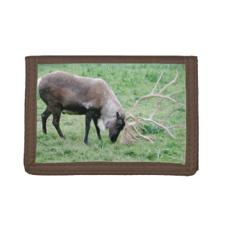 Caribou with Large Antlers Tri-fold Wallets