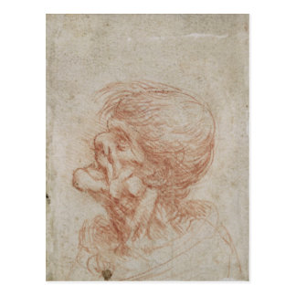 Caricature Head Study of an Old Man, c.1500-05 Postcard