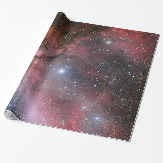 Carina Nebula, Wolf–Rayet star WR 22