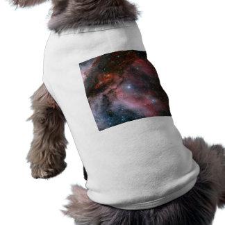Carina Nebula, Wolf–Rayet star WR 22 Dog Tee