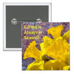 Caring is Always in Season! buttons Daffodils