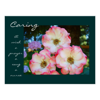 Caring Rose Healing Touch Gifts A Nurse A Prayer Poster
