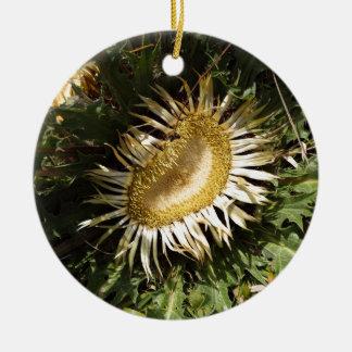 Carline thistle (Carlina acanthifolia) Round Ceramic Ornament