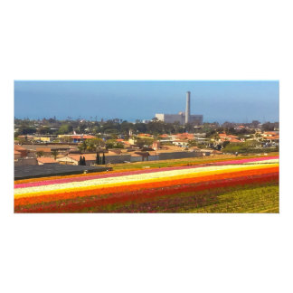 Carlsbad Flower Fields Card