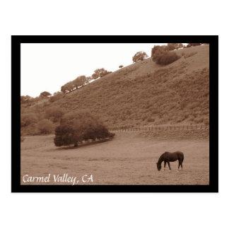 Carmel Valley Postcard