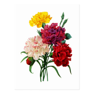 Carnation and Marigold Bouquet by Redoute Postcard