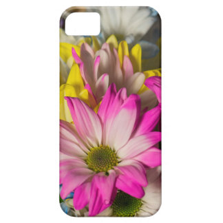 Carnations iPhone 5 Cases