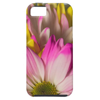 Carnations iPhone 5 Covers