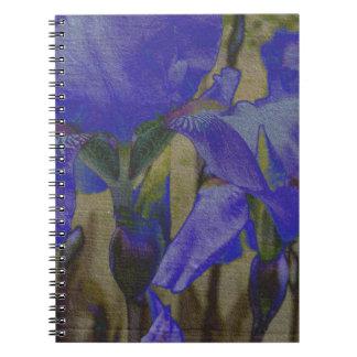 Carnet de jardin d'iris
