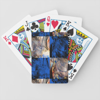 carnival chest bicycle playing cards