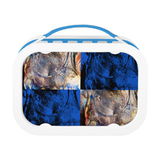 carnival chest lunch box