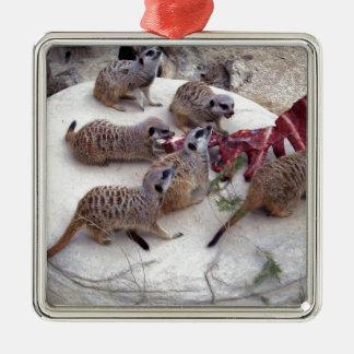 Carnivorous_Meerkats,_ Silver-Colored Square Ornament