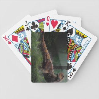 Carnotaurus Dinosaur Cretaceous Period Grass Trees Poker Deck