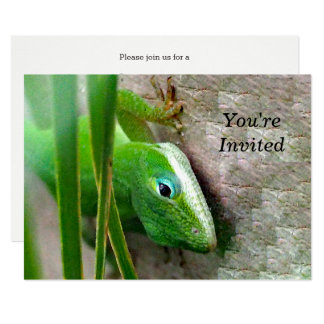 Carolina anole Invitation