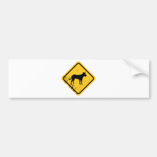 Carolina Dog Bumper Sticker