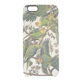 Carolina Parakeet, from 'Birds of America', 1829 Clear iPhone 6/6S Case
