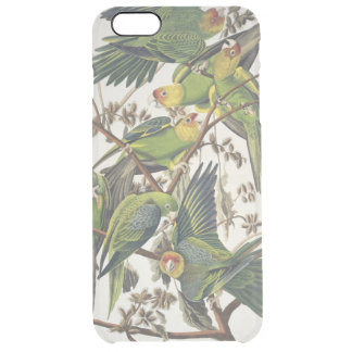 Carolina Parakeet, from 'Birds of America', 1829 Clear iPhone 6 Plus Case