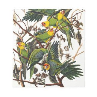 Carolina Parrot - John James Audubon (1827-1838) Notepad