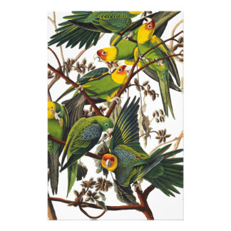 Carolina Parrot - John James Audubon (1827-1838) Stationery