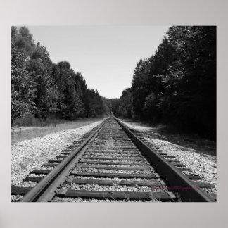 Carolina Tracks Poster