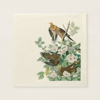 Carolina Turtle Dove, Birds of America by John Jam Disposable Napkin
