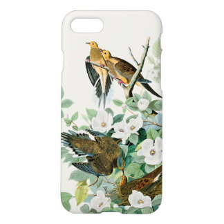 Carolina Turtle Dove, Birds of America by John Jam iPhone 8/7 Case