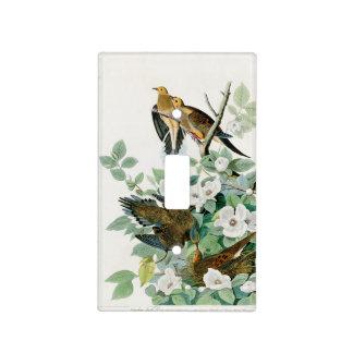 Carolina Turtle Dove, Birds of America by John Jam Light Switch Cover