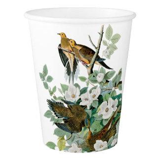 Carolina Turtle Dove, Birds of America by John Jam Paper Cup