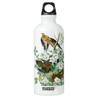 Carolina Turtle Dove, Birds of America by John Jam Water Bottle