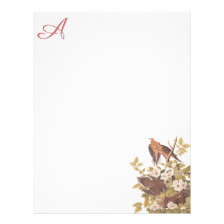 Carolina Turtle Dove Custom Letterhead