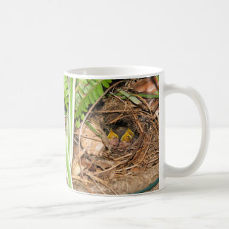 Carolina Wren Family 2 Mug